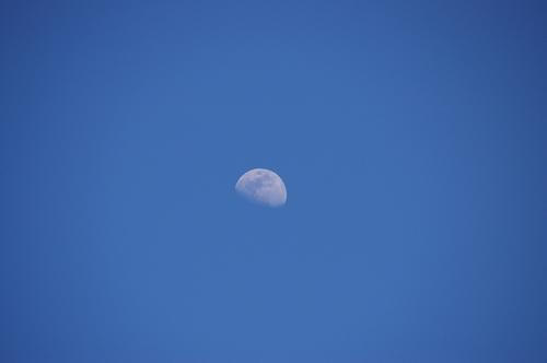 青い空に浮かぶ月